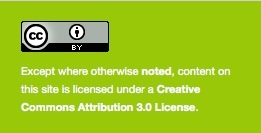 Example of license text/icon