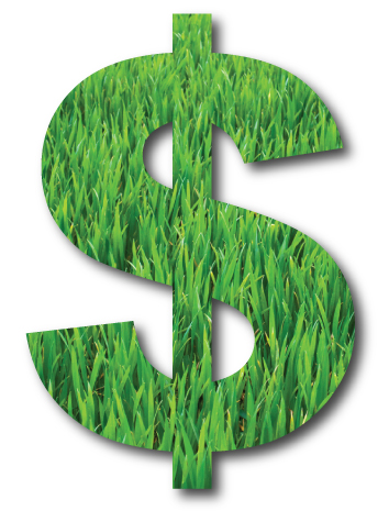 Dollar sign with green grass background
