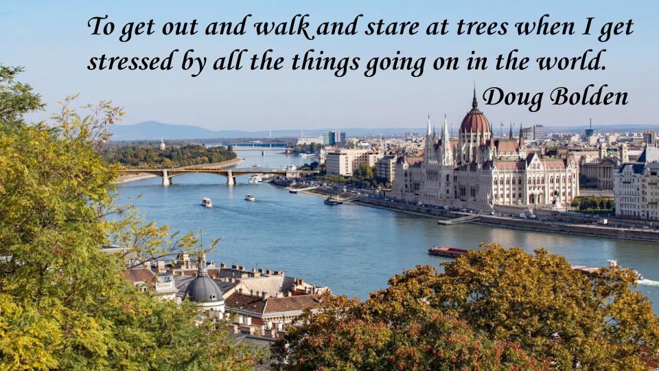 To get out and walk and stare at trees when I get stressed by all the things going on in the world. Doug Bolden