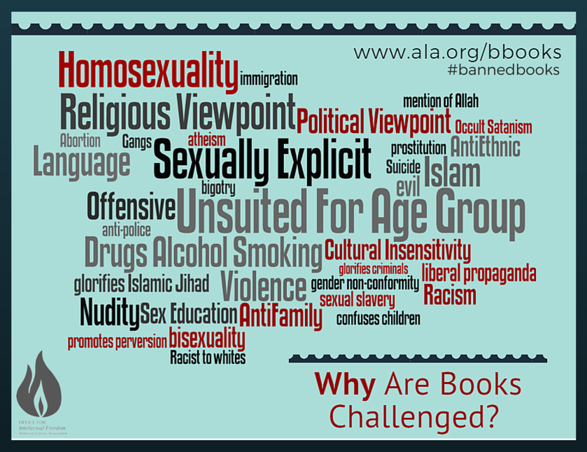 Word Map of Challenge Reasons