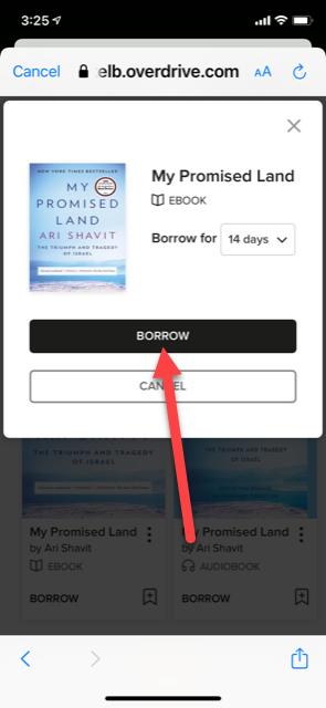 borrow screen in Libby app