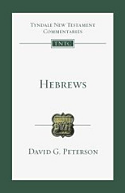 Hebrews : An Introduction and Commentary
