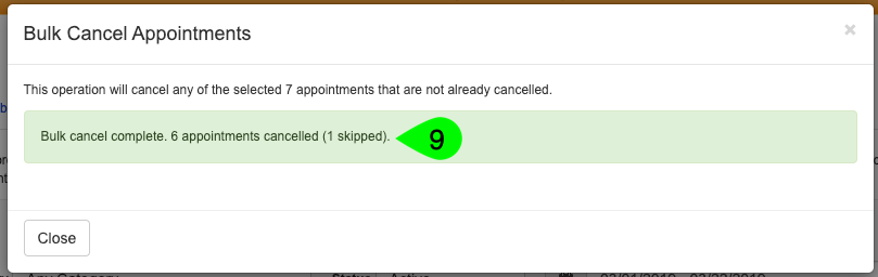 Example of the Bulk Cancel Appointments modal summary after the operation has been run