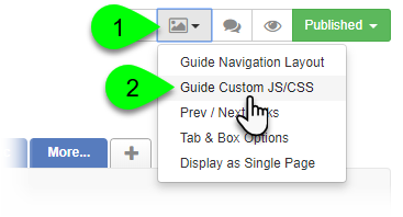 Selecting Guide Custom JS/CSS from the Guide Layout menu