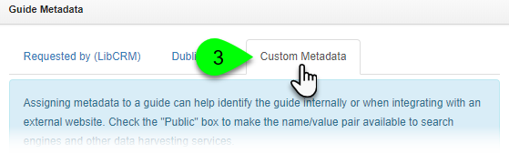 The Custom Metadata tab
