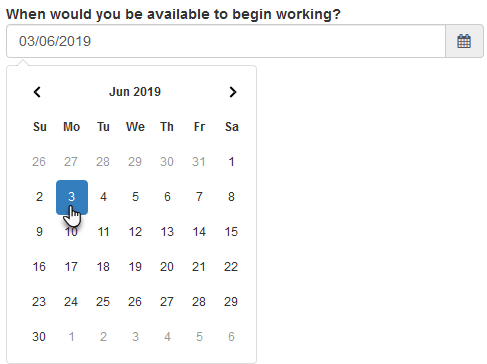 A date field on a form's public page