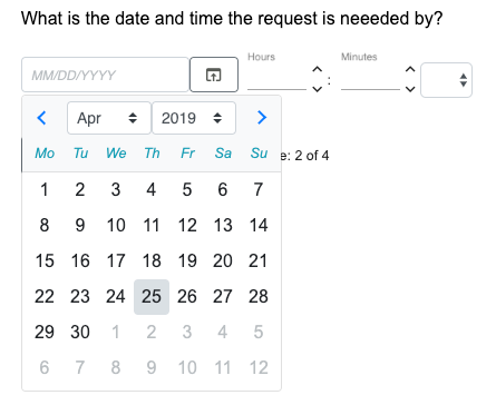 Example of a Date & Time input field