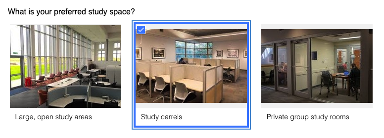 Example of an image choice field