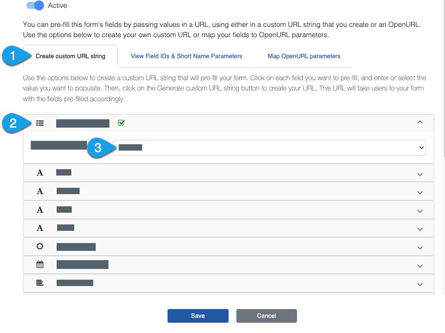 Setting field values under the Create Custom URL String tab