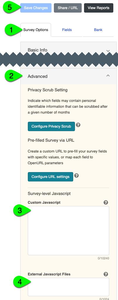 The Custom Javascript and External Javascript File options