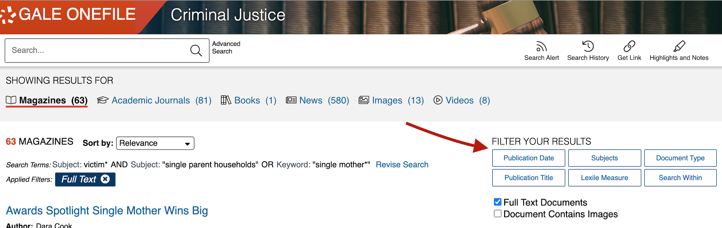 criminal justice collection search page with filter tabs
