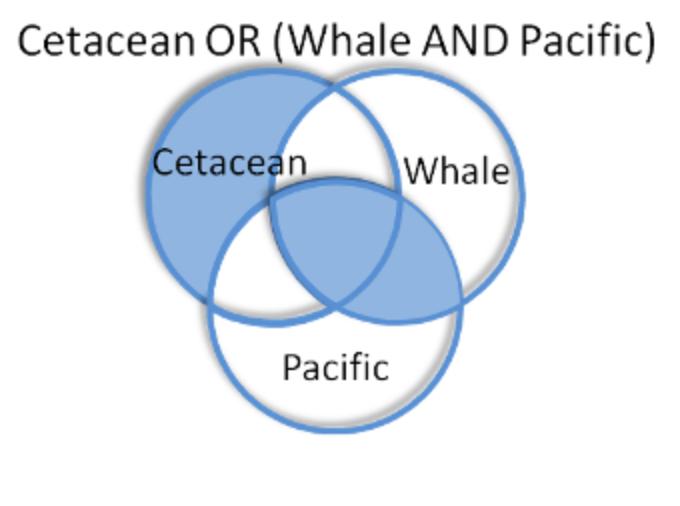 boolean operator diagram for OR plus parentheses