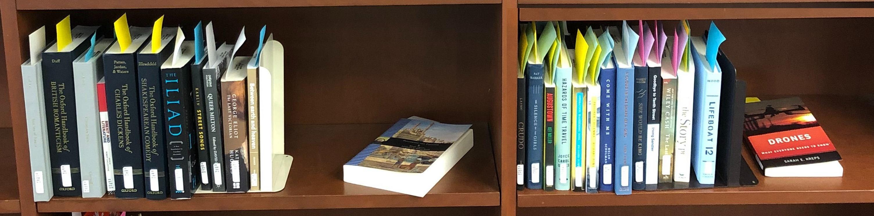New Books display shelving