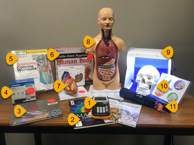 . library items available for checkout include calculators, coloring books, colored pencils, wi-fi hotspots, anatomy coloring workbook, magnetic human body, heart model, human body model, light box, skull model, umbrellas, headphones
