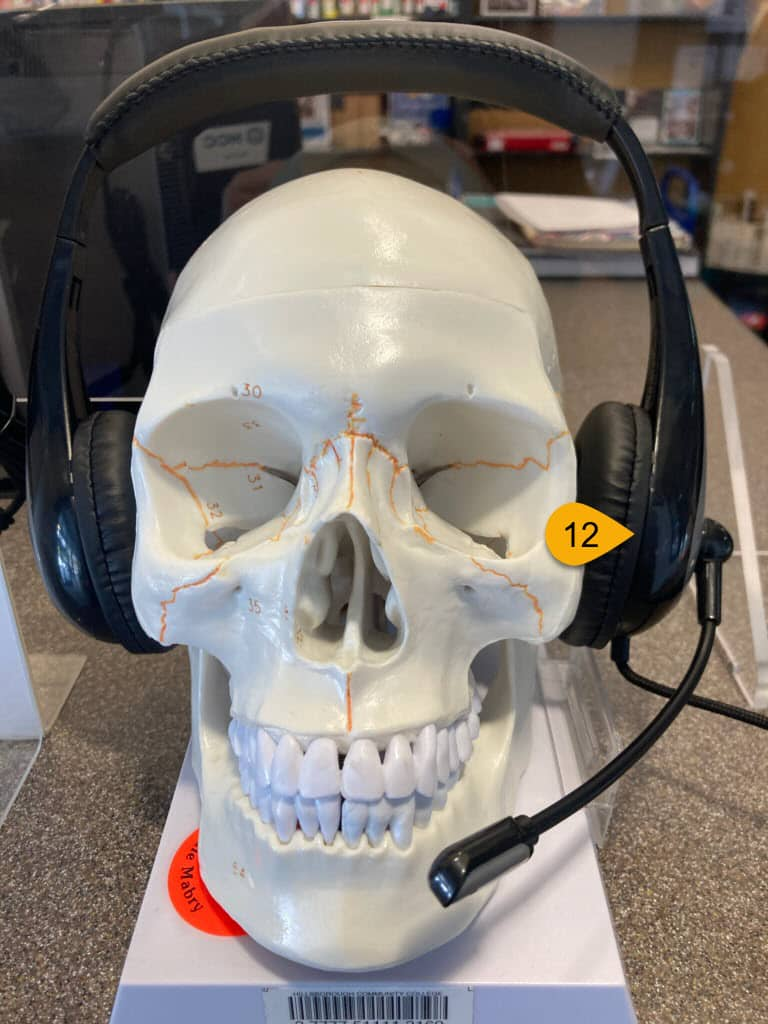 library items available for checkout include skull model and headset
