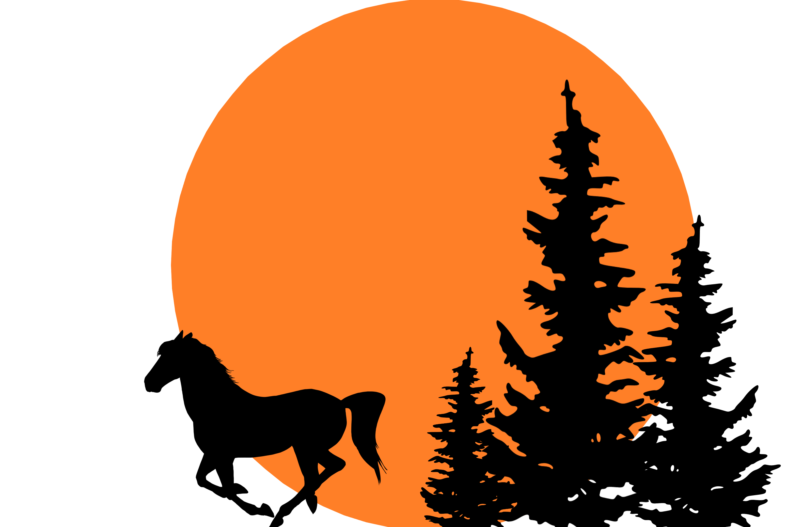 Running horse, sunset, pine trees