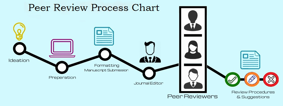 Peer review process chart