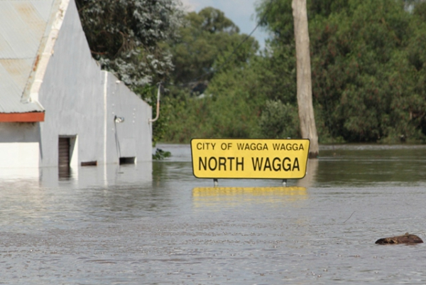 NORTH WAGGA WAGGA UNDER FLOOD, 2012, PHOTO COURTESY OF BRENTON VENABLES (SLNSW Magazine Summer 2013 14)