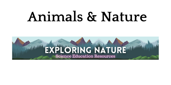 Animals and nature on Exploring Nature
