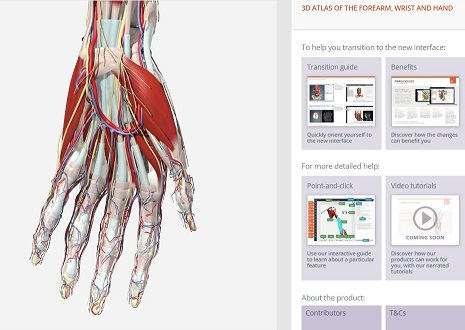Screenshot of Anatomy.TV database