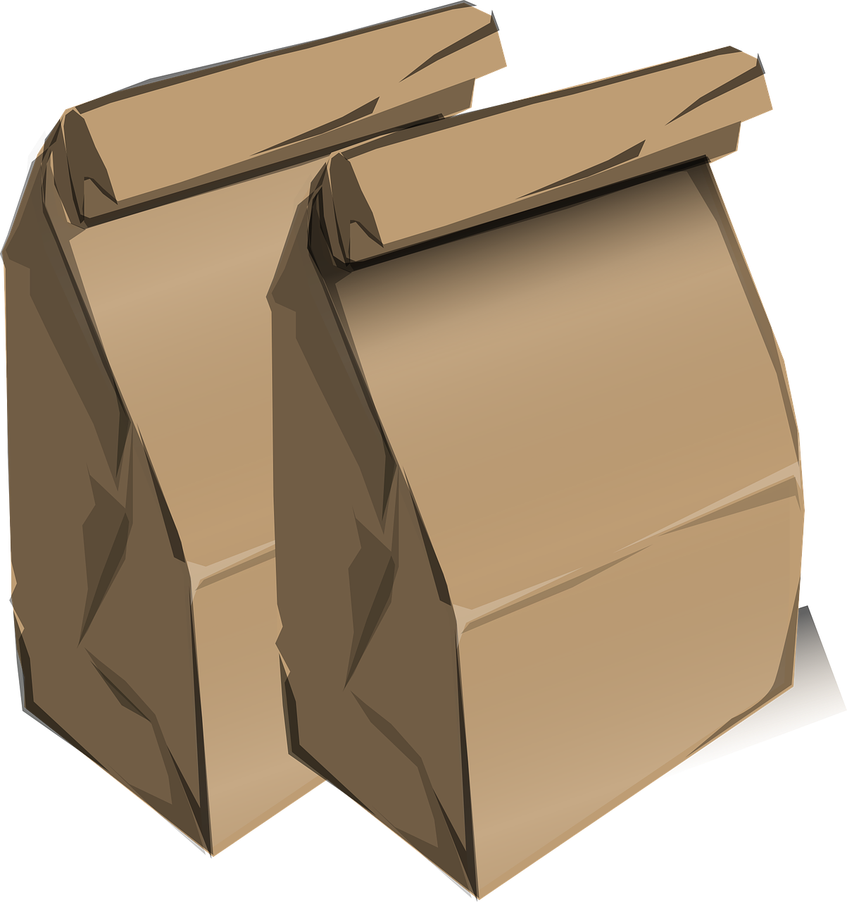 two brown paper lunch sacks