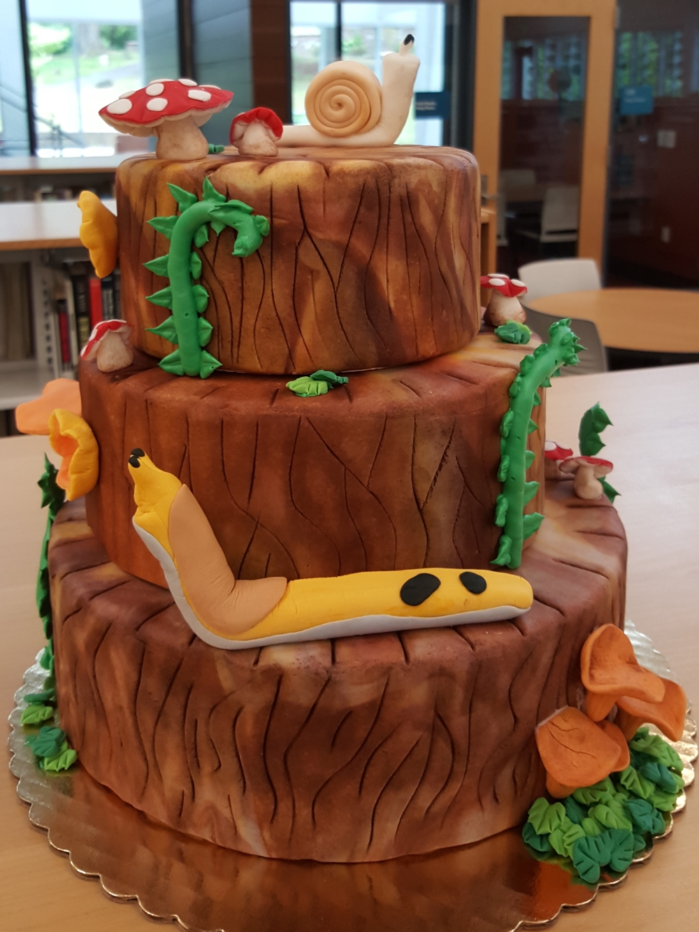 2018 Cakes PNW Forest - front view
