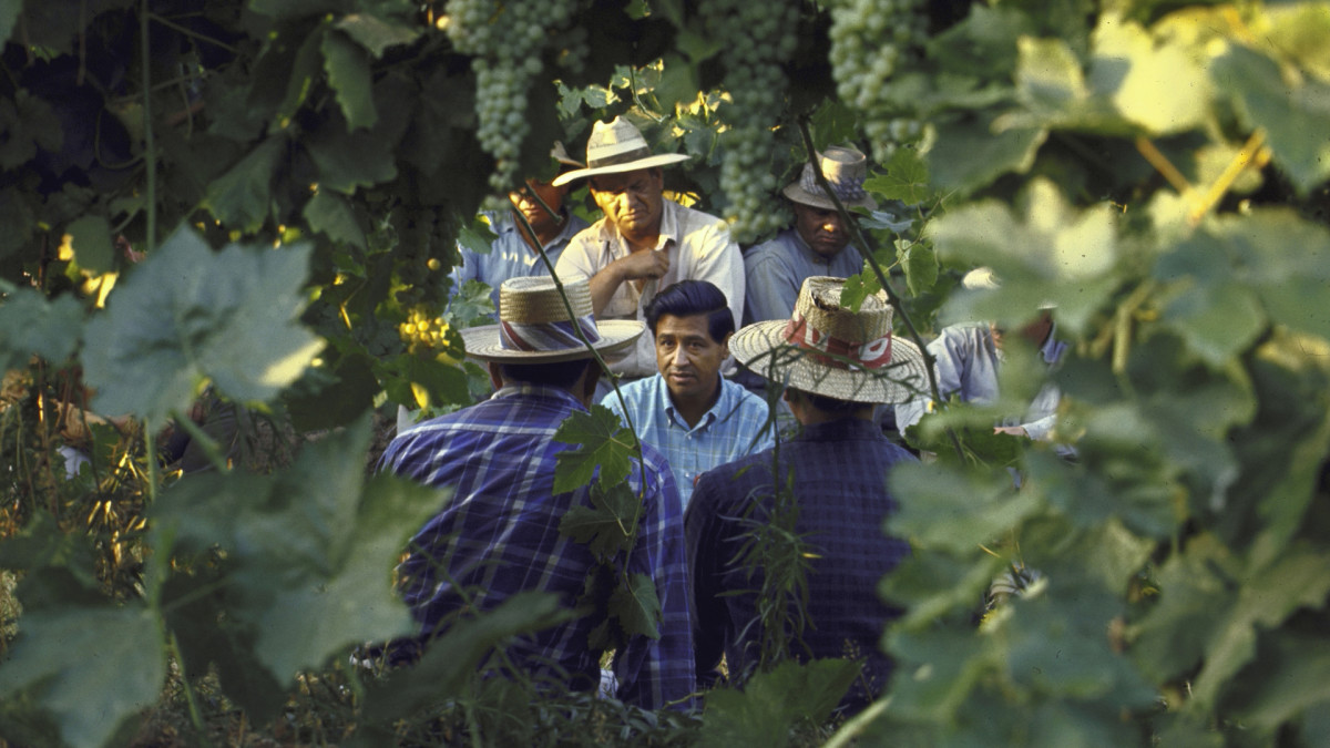 Cesar Chavez in a forested area talking to other people