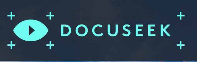 Logo with the title Docuseek