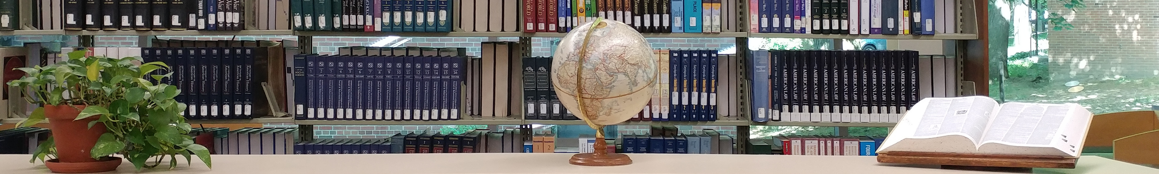 Library book shelves with plant, globe, and dictionary