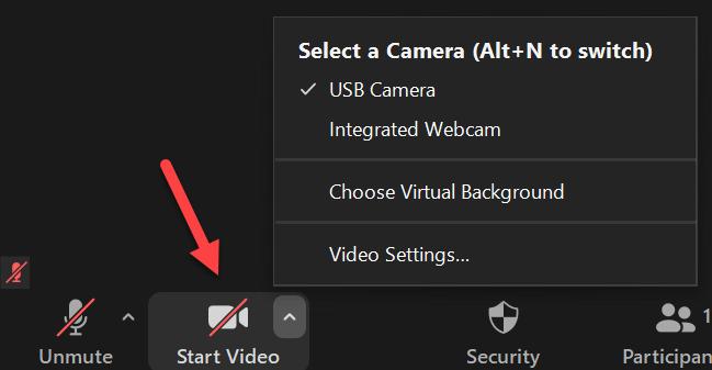 Participant's video settings panel
