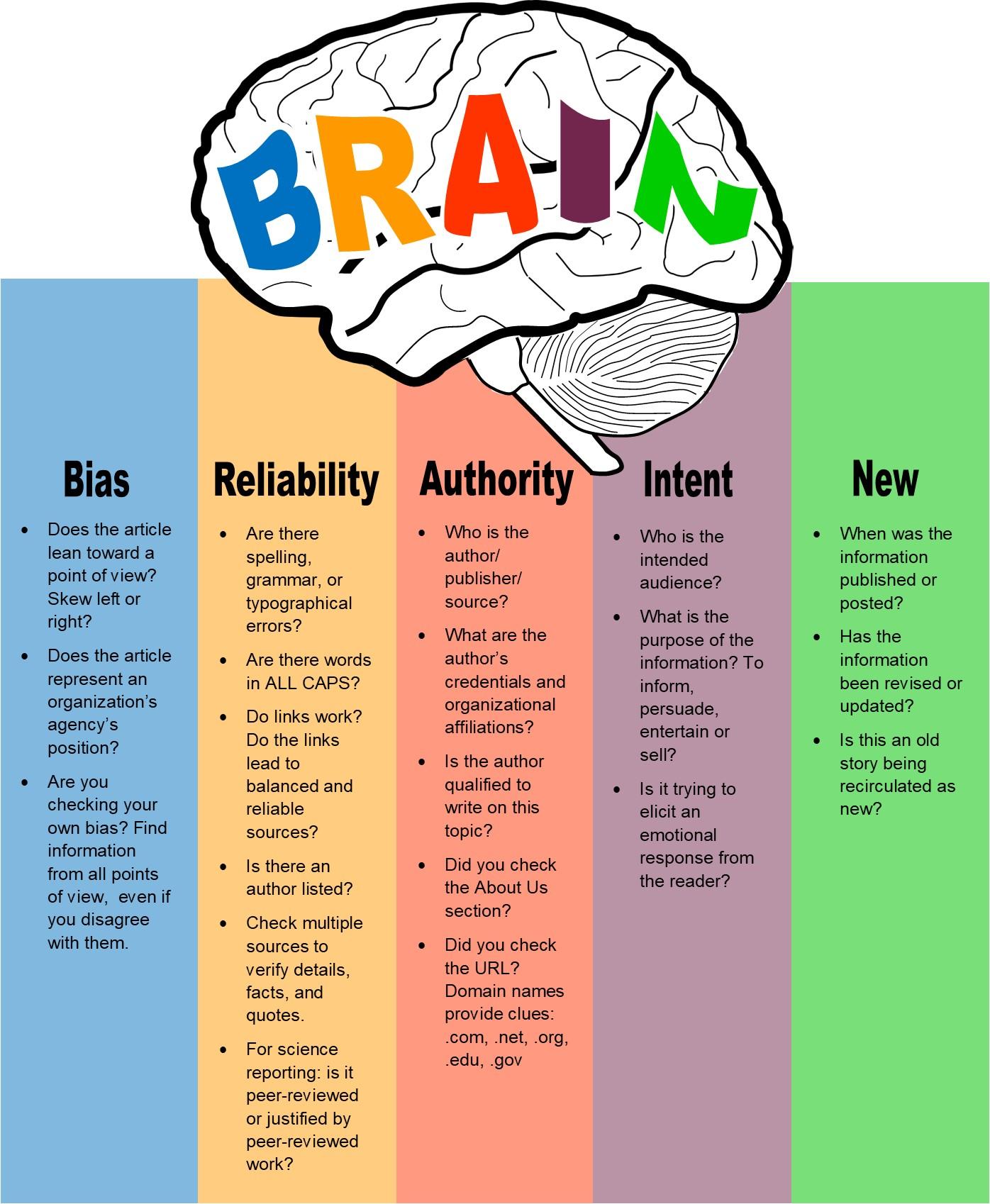 brain diagram to evaluate sources
