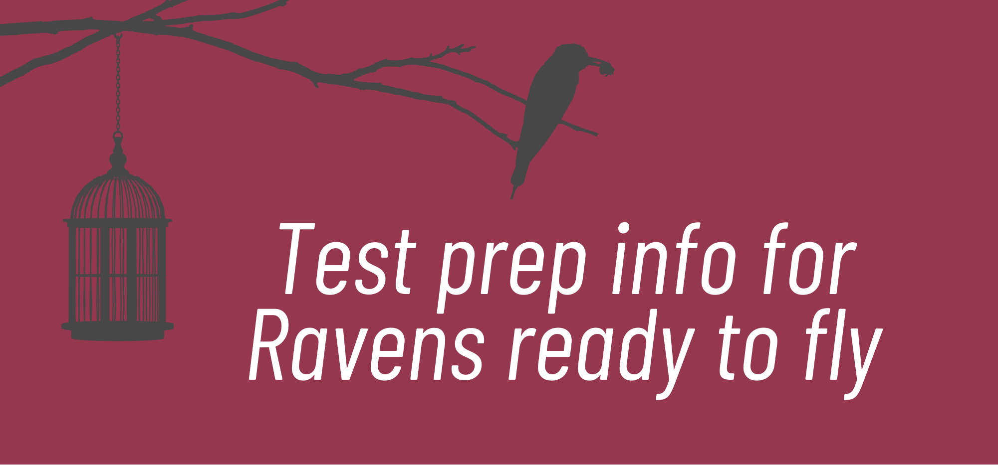 Test Prep info for Raven's ready to fly