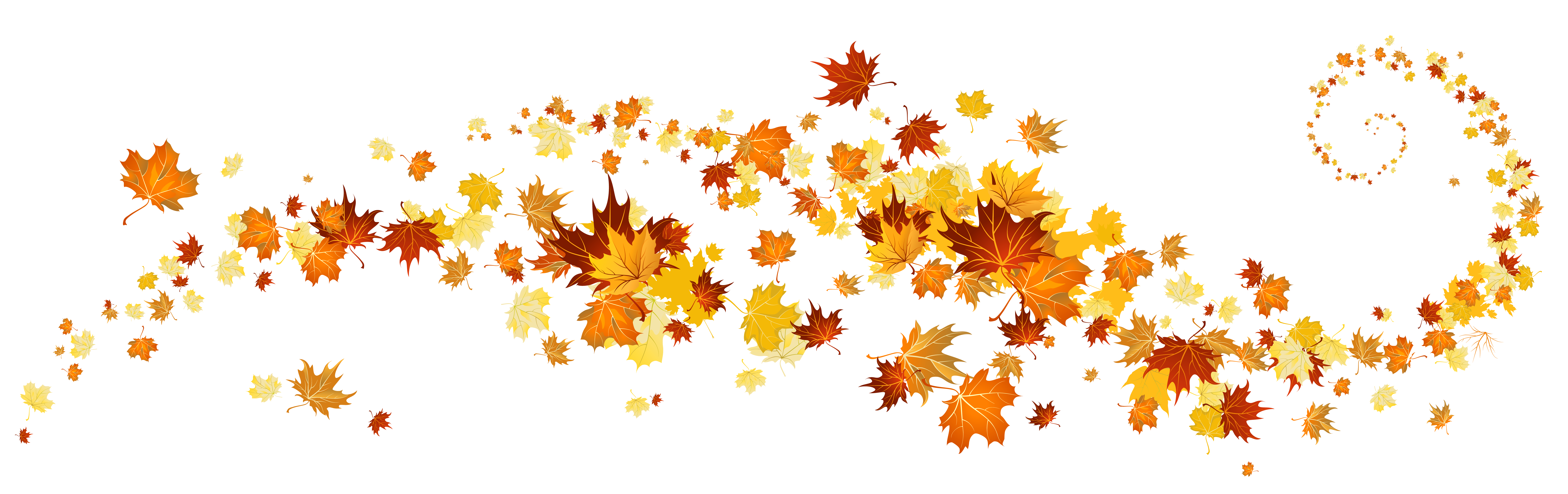 Orange and red fall leaves, attractively swirling