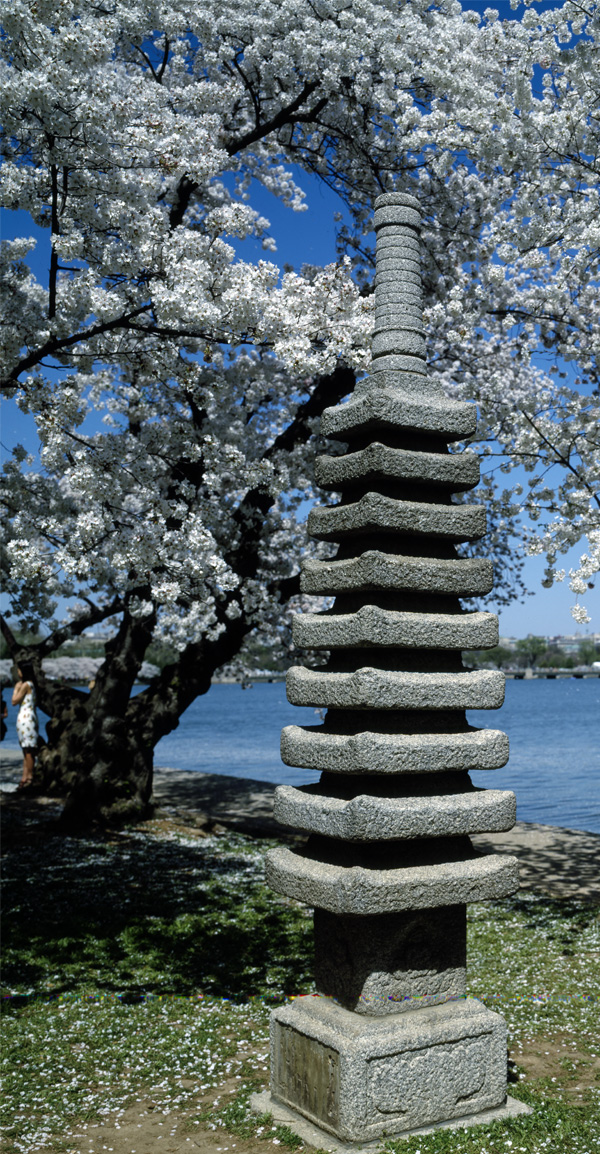 Japanese lantern on the Potomac River Tidal Basin during spring cherry blossom season, Washington, D.C. Photographs in the Carol M. Highsmith Archive, Library of Congress, Prints and Photographs Division.