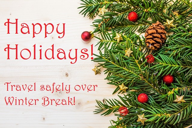 Words Happy Holidays with image of tree brances