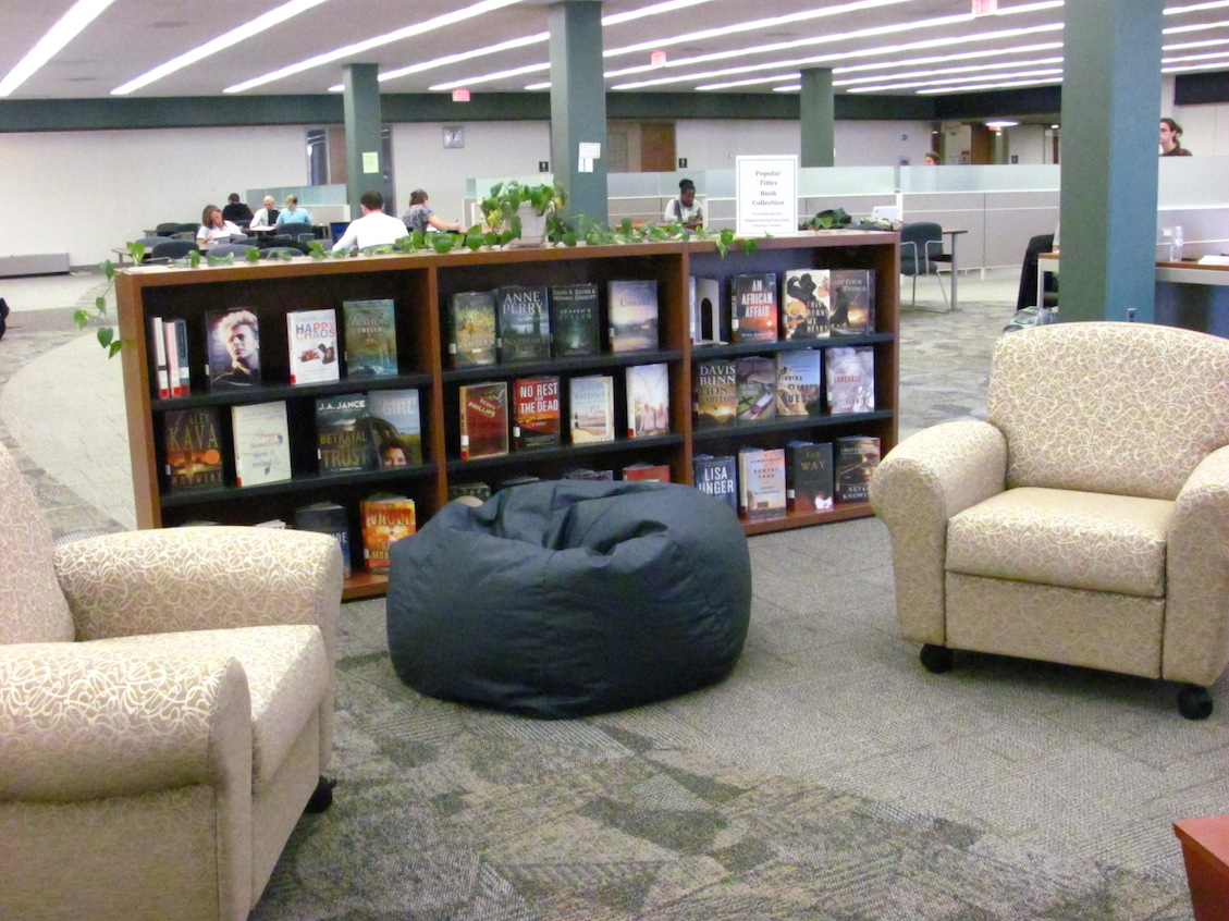 popular book collection selves with soft seating