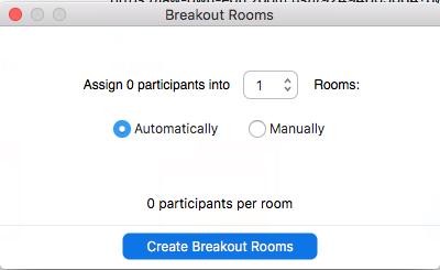 Zoom Breakout Room Sorter
