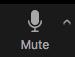 Zoom Mute Button