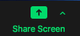 Zoom Screen Share Button