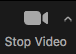 Zoom Stop Video Button