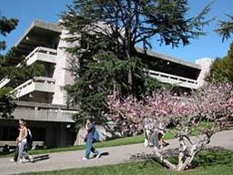 Moffitt Library in Spring