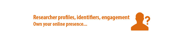 Researcher profiles, identity, and engagement