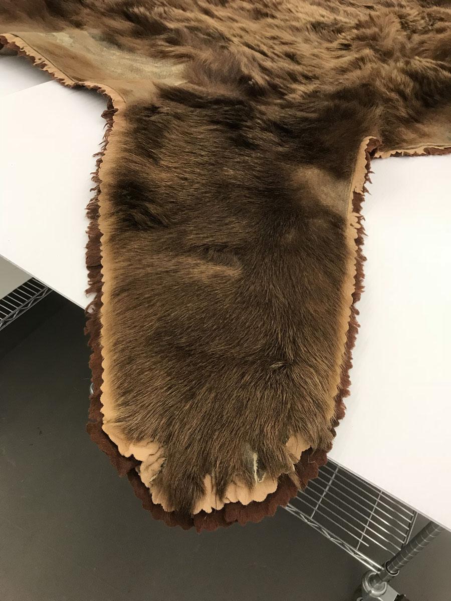 Stolen bear claws.
