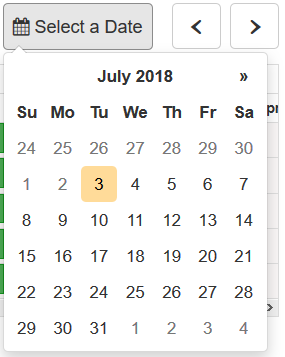 monthly calendar with single date highlighted