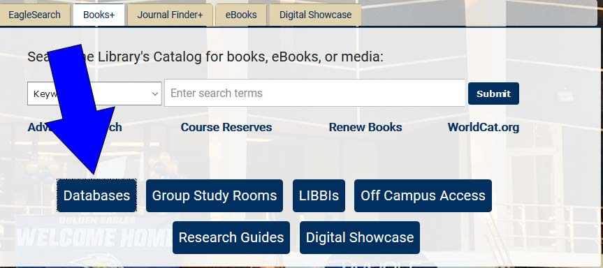 database button link on the library's home page