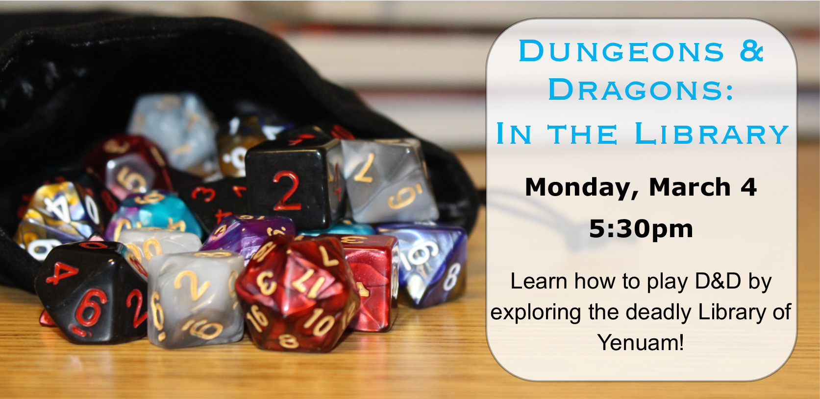 Dungeons & Dragons: In the Library