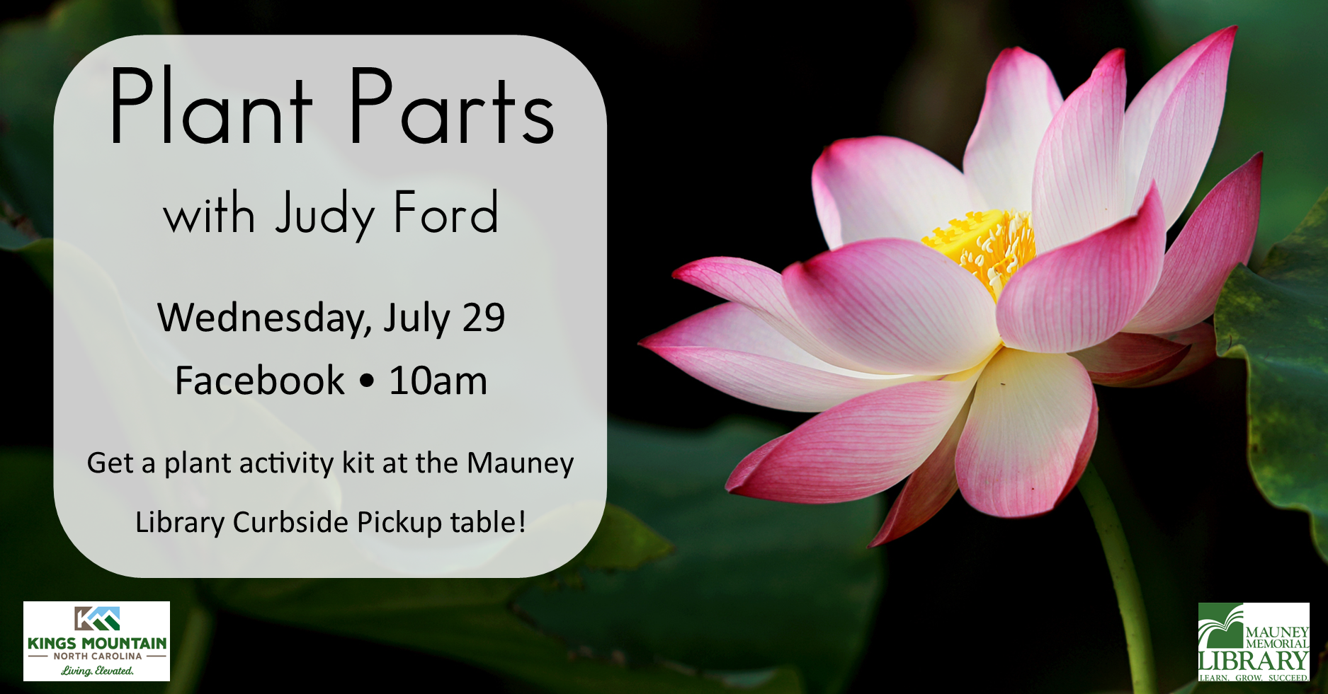 Plant Parts with Judy Ford