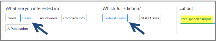 [ search for federal or state cases ]