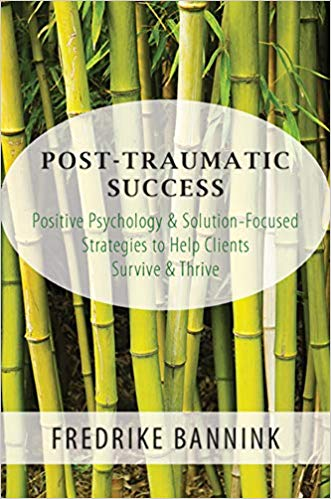 Post Traumatic Success book cover