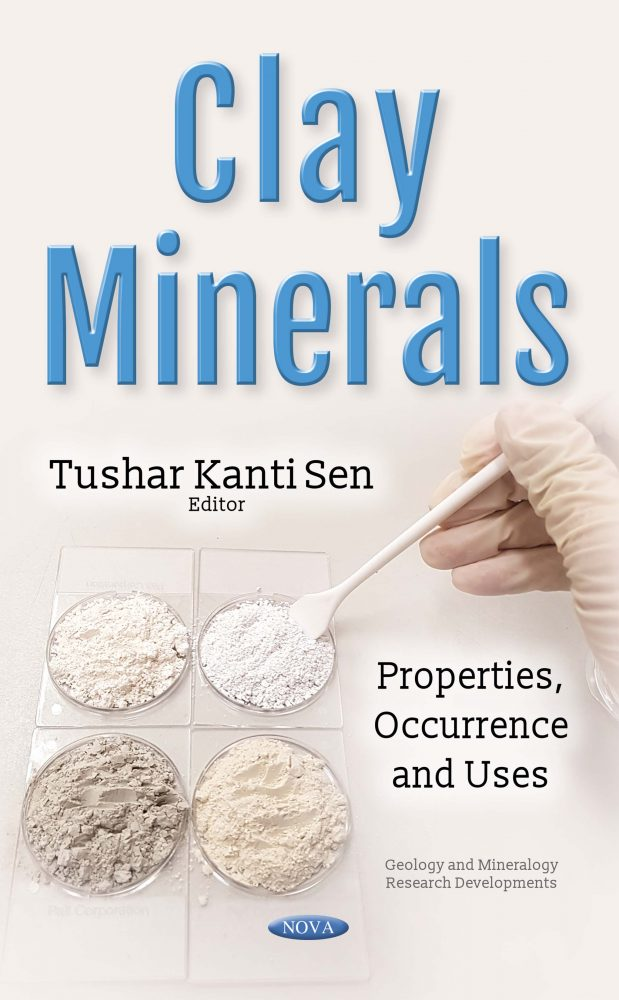 Clay Minerals book cover
